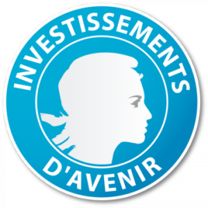 Investissmeents-d-avenir_large