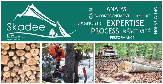 Meyer-Sansboeuf lance SKADEE, le 1er câble textile pour le débardage forestier conçu avec les professionnels