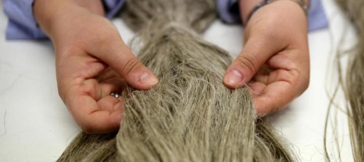 Participez au Crowfounding de VELCOREX : contribuez à la réhabilitation des matières naturelles dans les textiles en Alsace